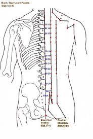 20 Described Acupuncture Alarm Points Chart
