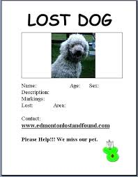 how to make lost dog flyers lost pet poster lost dog flyer template awesome lost pet poster