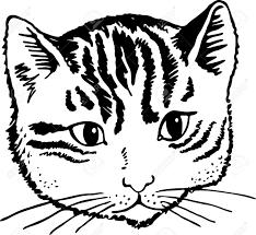 猫のかわいい顔のシンプルな黒と白のイラスト