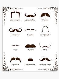 Mustache Style Identification Chart Canvas Print