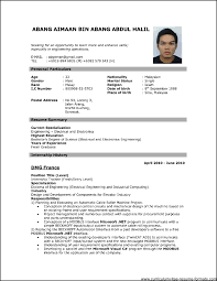 Resume Photo Format Resume Invoice