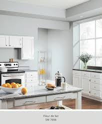 check out our 5 freshest kitchen colors view all sherwin williams