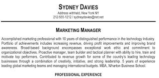 Resume Summary Example Marketing Manager Professional Experience