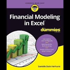 Personal Finance Model Financial Modeling In Excel For Dummies For Dummies