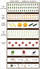 Vegetable Sunlight Requirement Chart Planning A Vegetable Garden Layout For Beginner Gardeners