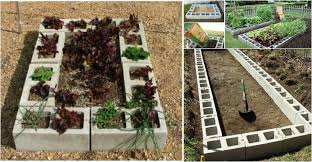 Small Picture DIY Raised Garden Bed with Cinder Block Video BeesDIYcom