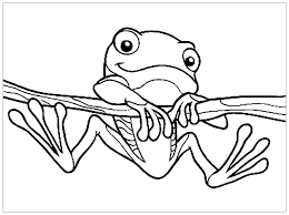 So, here are top 10 cute frog coloring papers for your kids. Frogs To Color For Kids Frogs Kids Coloring Pages