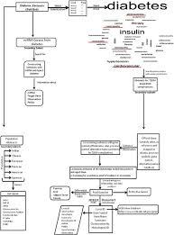 Venn Diagram Type 1 Type 2 Diabetes T2diacod A Gene Atlas Of Type 2 Diabetes Mellitus