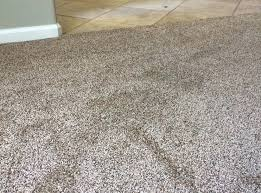carpet colors lowes color cheapest stainmaster at deals85