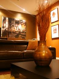 Orange And Brown Living Room Alex Sanchezs Design Portfolio Hgtv Design Star Hgtv