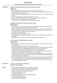 operations manager cv services operations manager resume samples velvet jobs