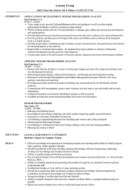 Sample Programmer Resume Senior Programmer Resume Samples Velvet Jobs 25