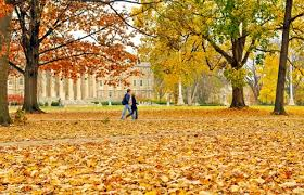 penn state pennsylvania state university university park  penn state pennsylvania state university university park profile rankings and data us news best colleges