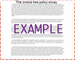 the smoke policy essay coursework help the smoke policy essay argumentative essay about why smoking should ban smoking in