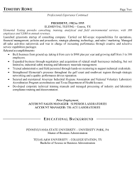 Sales Manager Resume Example