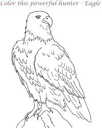 Coloring Pages Of Bald Eagles Trustbanksurinamecom