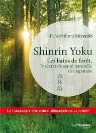 Shinrin Yoku Les Bains De Forêt Le Secret Japonais Pour Apaiser