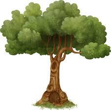 Картинки по запросу генеалогическое древо