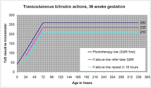Bilirubin Levels Chart Uk Jaundice Management On The Postnatal Wards