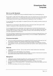 Microsoft Business Plans Templates Group Home Business Plan Template Luxury Microsoft Business Plan