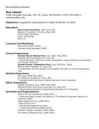 Clinical Director Resume Graduate Nurse Templa Saneme
