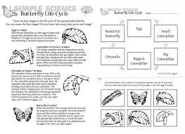 Life Cycle Of A Butterfly Worksheets For 2Nd Grade Worksheets for ...