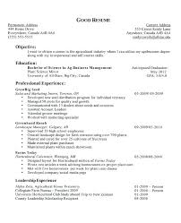 Examples Of Teenage Resumes Gorgeous Resume Examples High School Student No Experience Little Templates