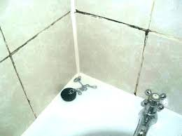how to remove mold from shower grout how to get mold out of grout how to how to remove mold from shower