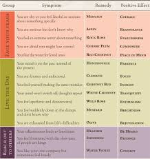 Bach Flower Remedies Chart Pin On Flower Essences And Gem Elixirs