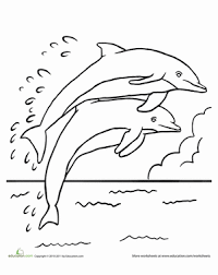 Small Picture Leaping Dolphins Worksheet Educationcom