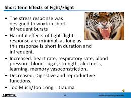 Image result for image of fight and flight