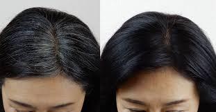 今話題の白髪染めボタニカルエアカラーフォーム(LAP)(11/10コード) | ランキングラボ