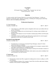 Cv Resume Text Format It Project Manager Resume Sample Jobsxs Com