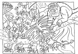 Animal Camouflage Coloring Pages Coloring Pages For Kids