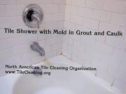 shower caulk black mold in bathroom caulking