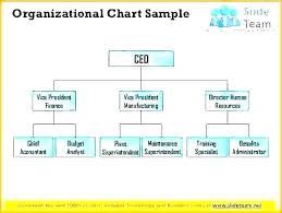 Company Organogram Examples
