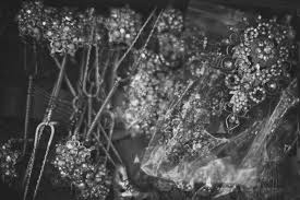 elegant black and white wedding a photographers elegant black and white wedding album bridestory blog