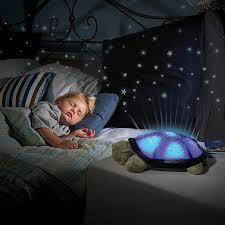 turtle lamp night