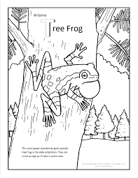 tree frog template tree frog coloring page at getdrawings com free for personal use