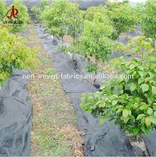 Landscape Weed Control Fabric Ground Cover / Root Protection Weed Barrier /  Pp Weed Mat - Buy China Supply Agriculture Weed Control Fabric Flat Yarn  Woven ...