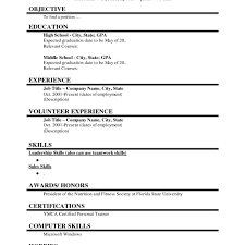 Template First Job Resume Objective Example Sample Template With