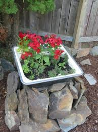 google image result for http themicrogardener com wp content