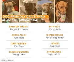 Pets of Southbelt | Facebook