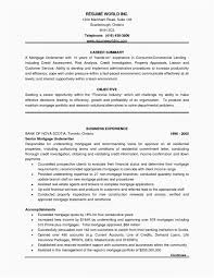 Loan Officer Resume Examples Inspirational Mortgage Loan Ficer