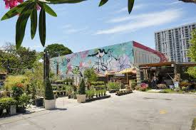 casaplanta midtown garden center in miami fl you midtowngarden 37 prism creative group miami s only culture crusaders gem