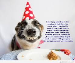 Happy Dog Quotes. QuotesGram via Relatably.com