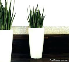 indoor planting containers large indoor flower pots indoor plant containers fancy design large indoor planters modest