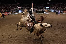 pro bull riding. Modren Pro The Professional Bull Riders Live At MSG Intended Pro Riding U