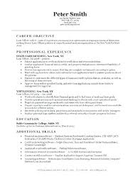 Sample Resume For Entry Level Chemical Engineer Monster Resumes By