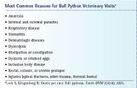 Ball Python Care Vetfolio